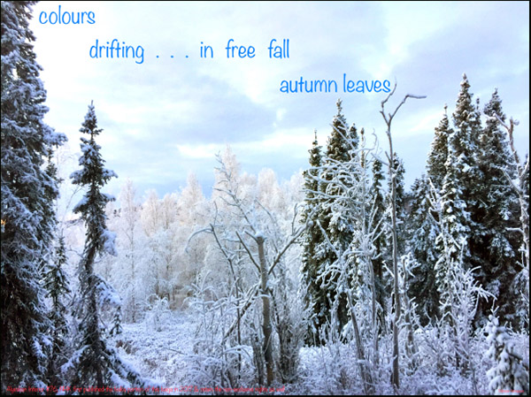 'colors / drifting... in free fall / autumn leaves' by Bukusai Ashagawa