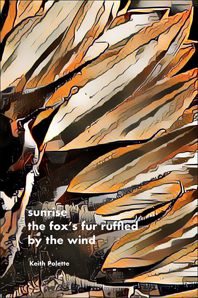 'sunrise / the fox's fur ruffled / by the wind' by Keith Polette