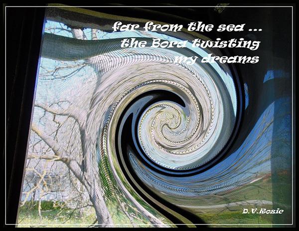 'far from the sea... / the bora twisting / my dreams' by DV Rozic
