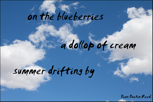 'on the blueberries / a dollop of cream / summer drifting by' by Dian Reed