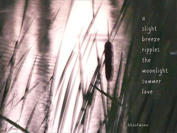 'a  / slight  / breeze / ripples / the  / moonlight / summer / love' by Barbara kaufmann