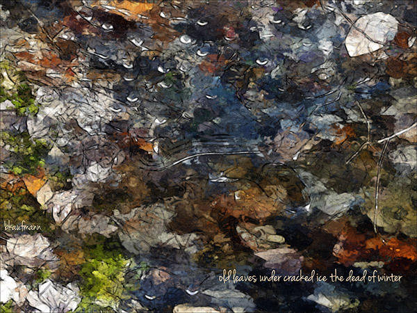 'old leaves under cracked ice the dead of winter' by Barbara kaufmann