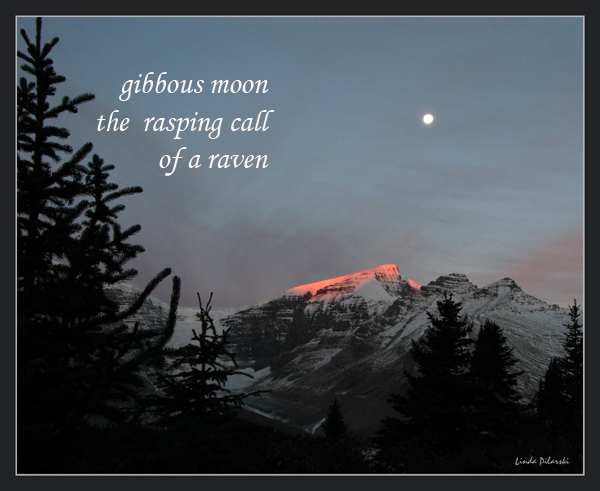 'gibbous moon / the rasping call / of a raven' by Linda Pilarski