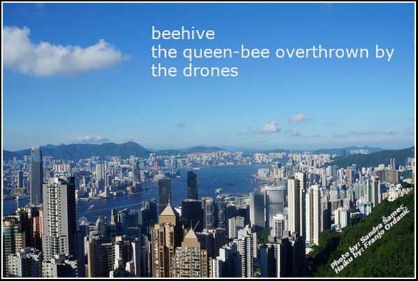 'beehive / the queen-bee overthrown by / the drones' by Franco Ordanic. Art by Sandra Samec