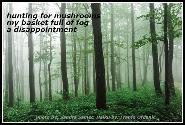 'hunting for mushrooms / my basket full of fog / a disappointment' by Franjo Ordanic. Art by Sandra Samec