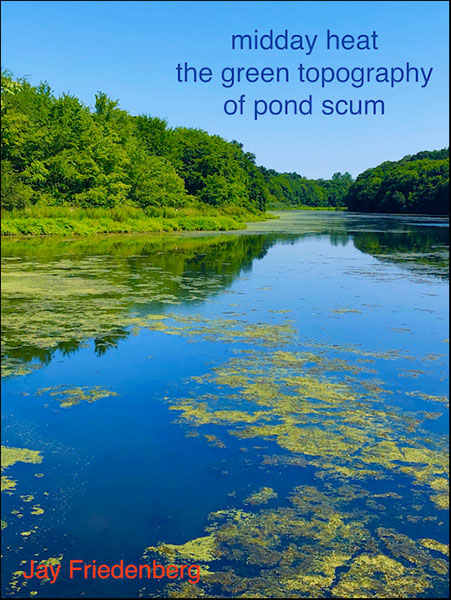 'midday heat / the green topography / of pond scum' by Jay Friedenberg
