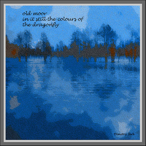 'old moor / in it still the colors of / the dragonfly' by Dimitrij Skrk