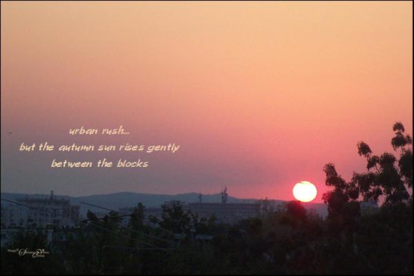 'urban rush... / but the autumn sun rises gently / between the blocks' by Steliana Voicu. Haiku first published in Ploc! La revue du haiku #78, Dec 2015
