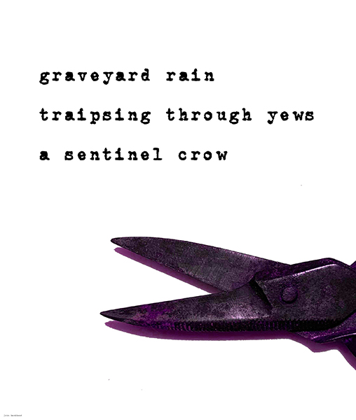 'graveyard rain / traipsing through the yews / a sentinel crow' by John Hawkhead