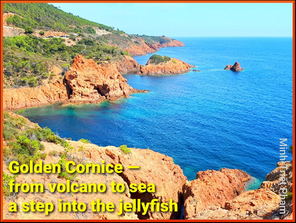 'golden cornice— / from volcano to sea / a step into the jellyfish' by Minh-Treit Pham