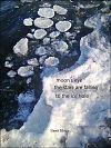 'moon's eye / the stars are falling / to the ice hole' by Slawa Sibiga