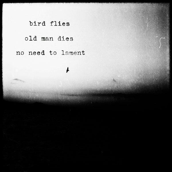 'bird flies / old man dies / no need to lament' by Kon Markogiannis