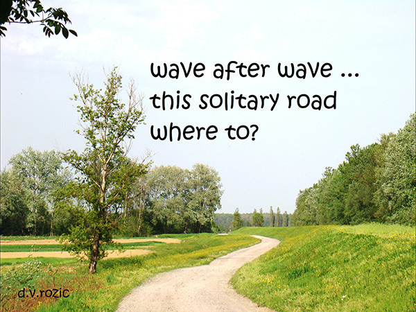 """'wave after wave... / this solitary road / where to?"""" by Djurdja Rozic"""