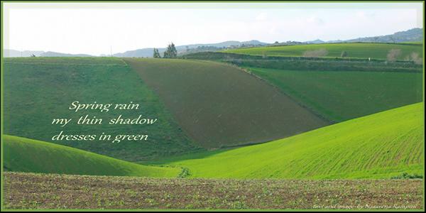 'spring rain / my thin shadow / dresses in green' by Nazarena Rampini