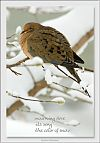 'mourning dove / its song / the color of snow' by Marjorie Buettner. Art by Michael Wetteland.