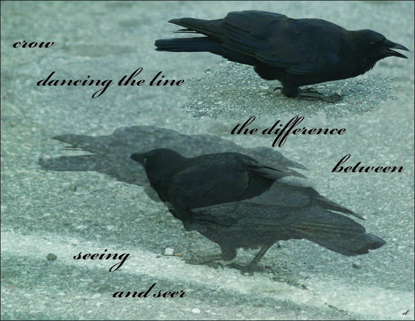 'crow dancing the line / the difference between / seeing and seer' by Sydney Lancaster.