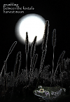 'grumbling / between the foxtails / harvest moon' by Nicole Pakan