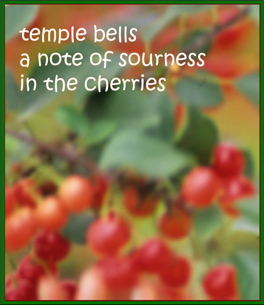 """'temple bells / a note of sourness - in the cherries' by Francis Masat. Haiku first published in Frogpond 28""""#1, 2005."""