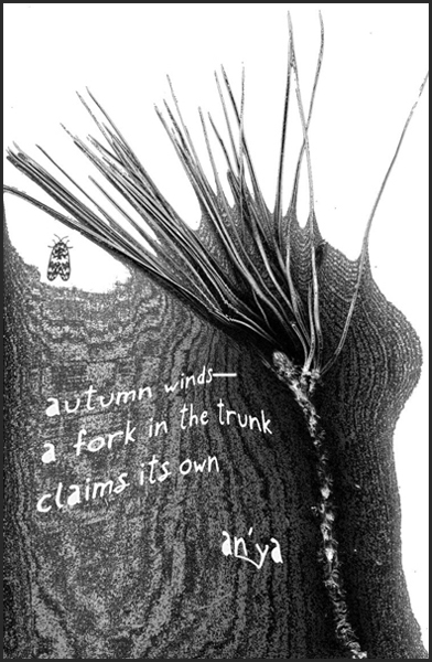 autumn winds� / a fork in the trunk / claims its own' by an'ya