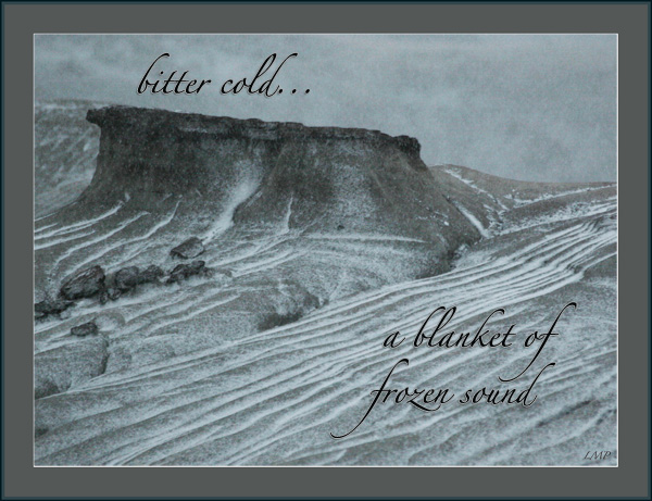 'bitter cold / a blanket of  / frozen sound' by Linda Pilarski. Haiku first published in DailyHaiku, Cycle 6, 2008.