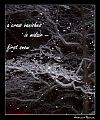 'a crow vanishes / in midair� / first snow' By Francis Masat. Haiku first published in Ambrosia #2, Winter 2009.