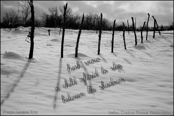 "'fresh snow / a child afraid to step / between the shadows"" by Cristina-Monica Moldveanu. Art by Lavana Kray."