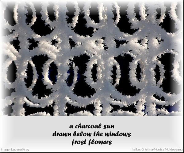 'a charcoal sun / drawn below the windows / frost flowers' by Cristina-Monica Moldveanu. Art by Lavana Kray.