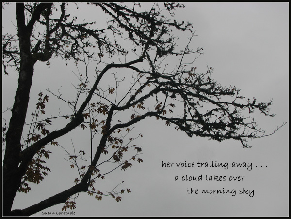'her voice trailing away... / a cloud takes over / the morning sky' by Susan Constable.