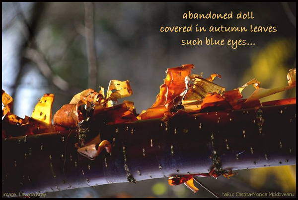 abandoned doll / covered in autumn leaves / such blue eyes' by Cristina-Monica Moldoveanu. Art by Lavana Kray.