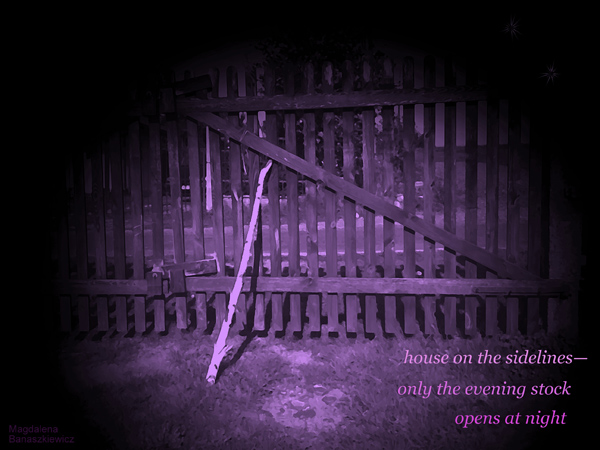 'house on the sidelines� / only the evening stock / opens at night' by Magdalena Banaszkiewicz